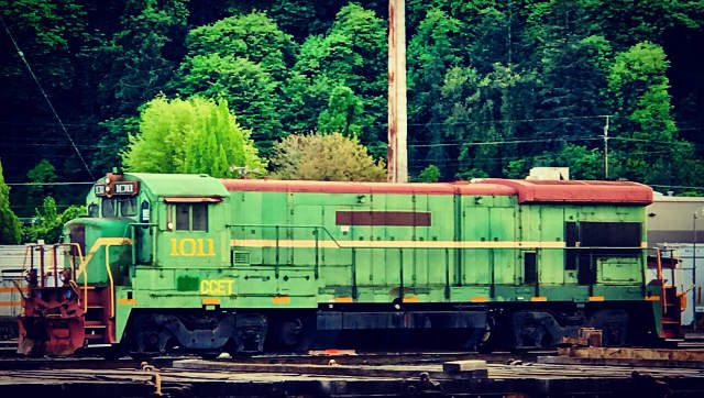 Free Shipping MP SCENERY 100 Grape Vines HO Scale Model Farm Railroad Layout